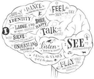rewire-the-brain
