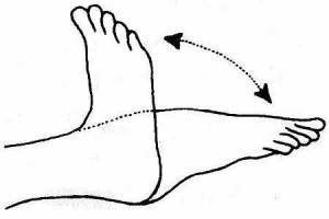 rotating-your-ankles-exercise