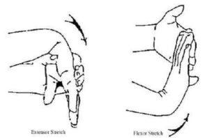 wrist-stretches